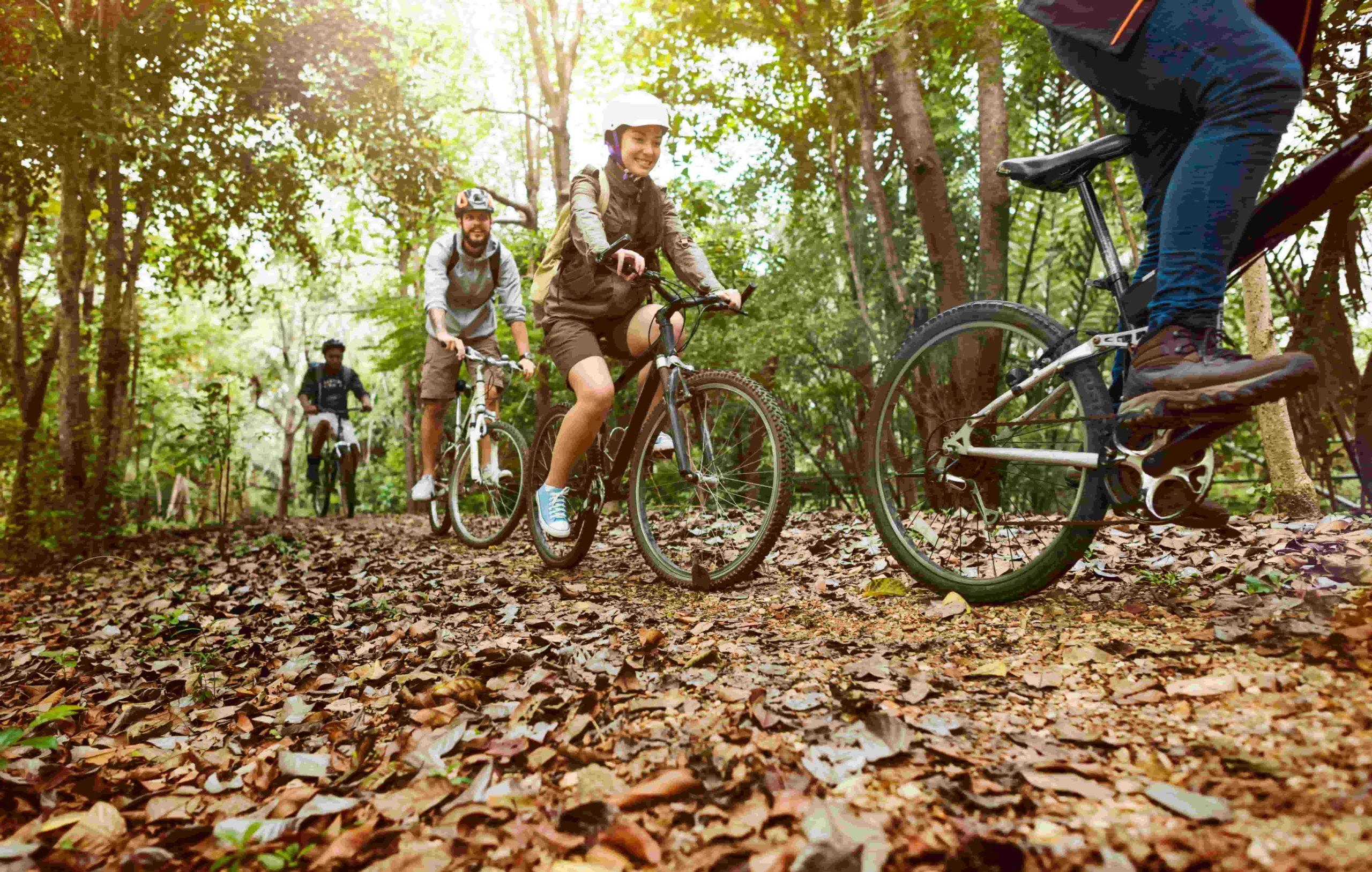 activité séminaire entreprise yvelines vélo